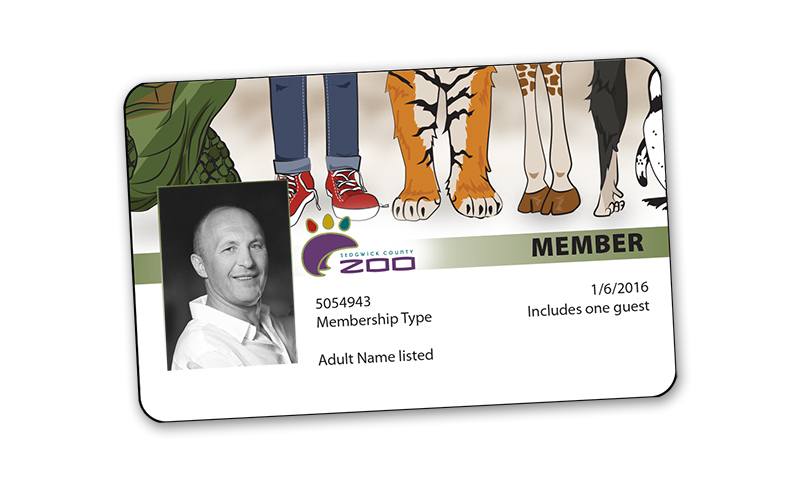 Membership Card design and layout